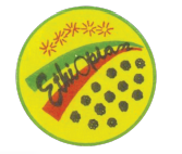 ethiopulse
