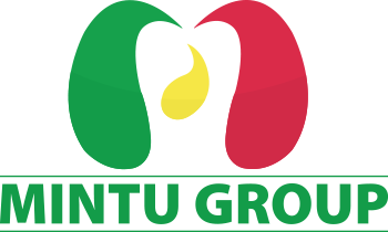 Mintu-Investment Group